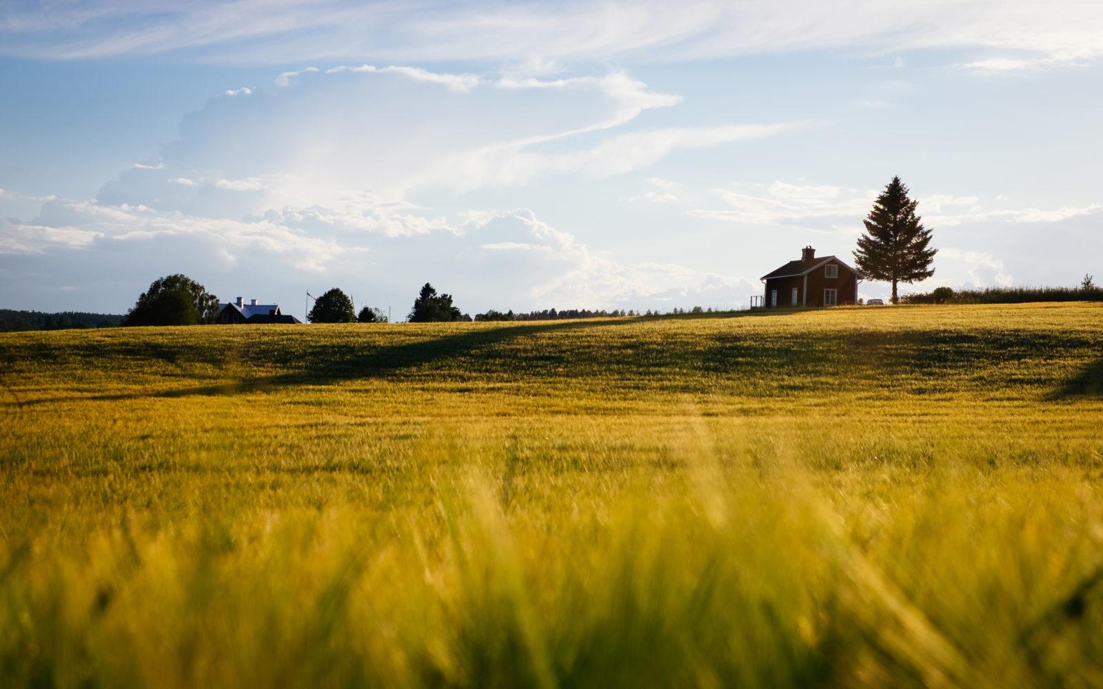 une maison isolée dans une campagne